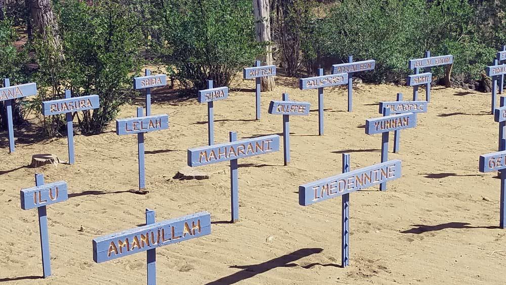 A Dogs' graveyard